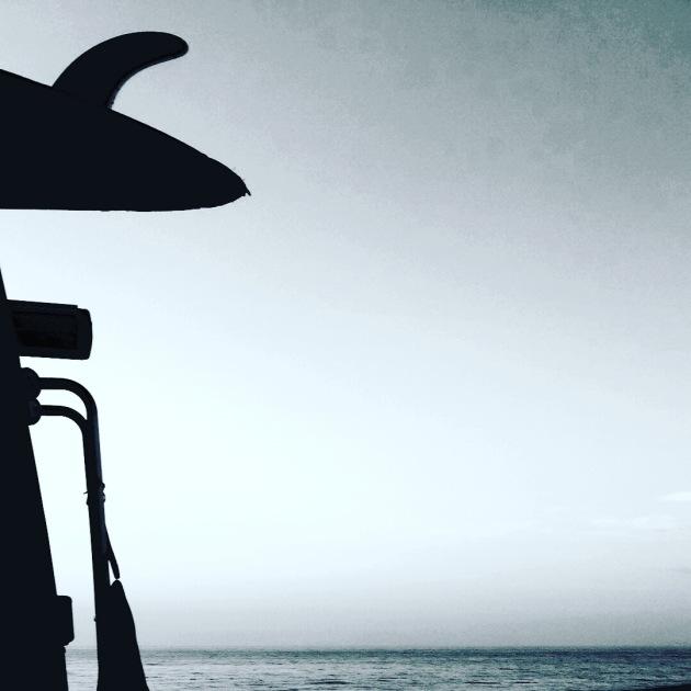 #dream #surftrip #dpmsnowshop