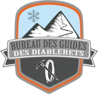 logo-bdgcolor